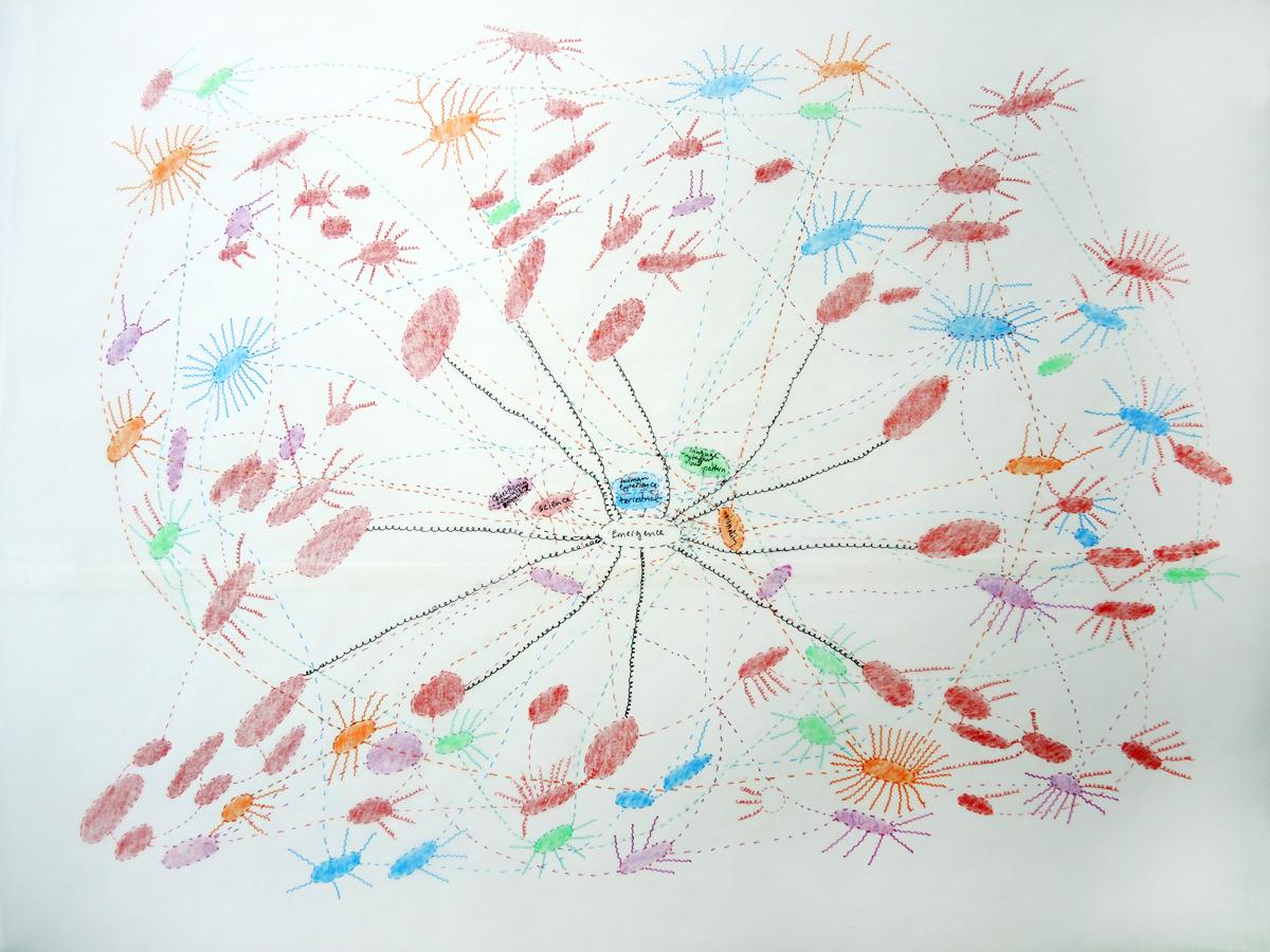 emergence map